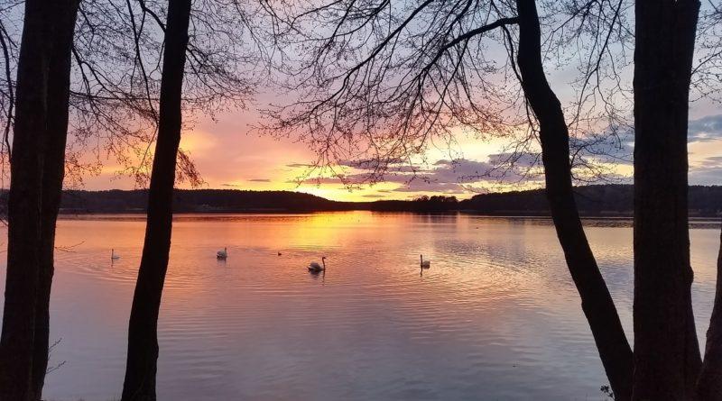 lake-806034_1280