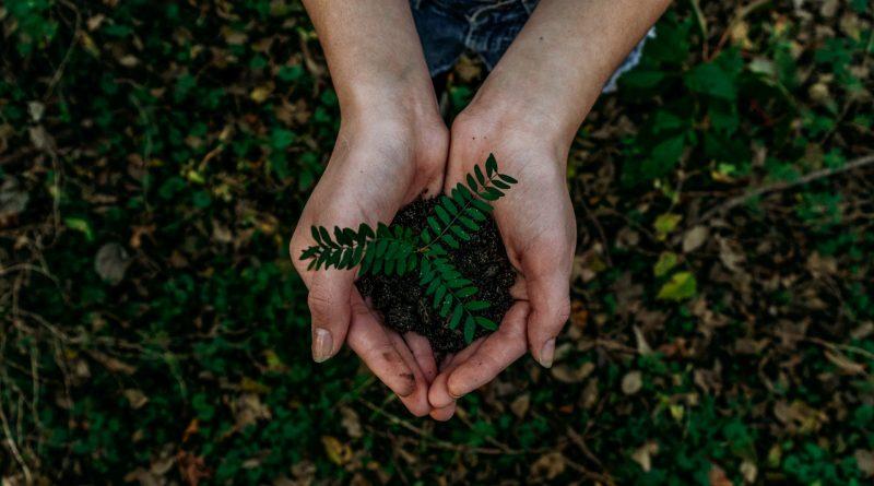 Marketing ekologiczny – o co tu chodzi?